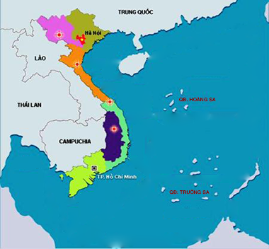 Synjectos Viet Nam Region